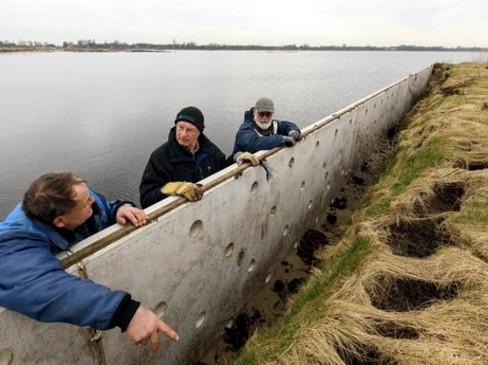 Oeverzwaluwwand zwaar beschadigd