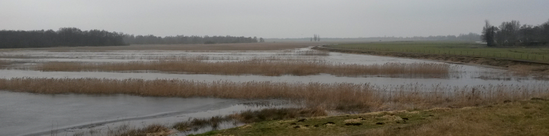 Test 2017 waterberging Wetering West - bij Natuurbrug