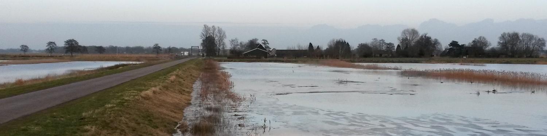 Test 2017 waterberging Wetering West - bij Rietweg