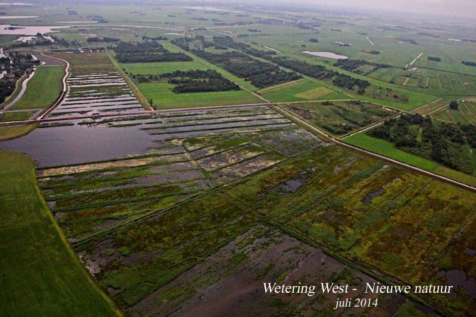 Wetering West - juli 2014