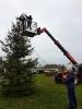 Opruimen kerstboom 2018